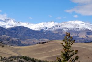 Fresh snow on Trout Peak in Shoshone National Forest in Wyoming